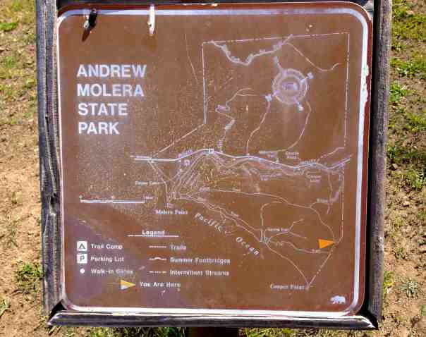 The Andrew Molera State Park is just a short drive away from the Pfeiffer Big Sur State Park with lots of wonderful hiking trails and a lovely beach.