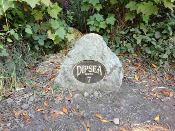 The Dipsea Trail, famous for its grueling 7.5 mile trail race.