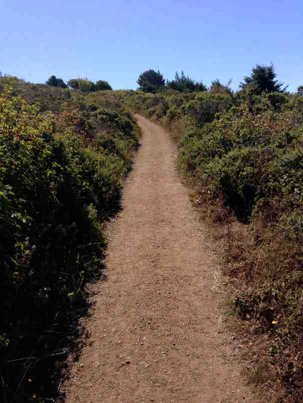 The Dipsea Trail- arid and sun-exposed. So different from Matt Davis.