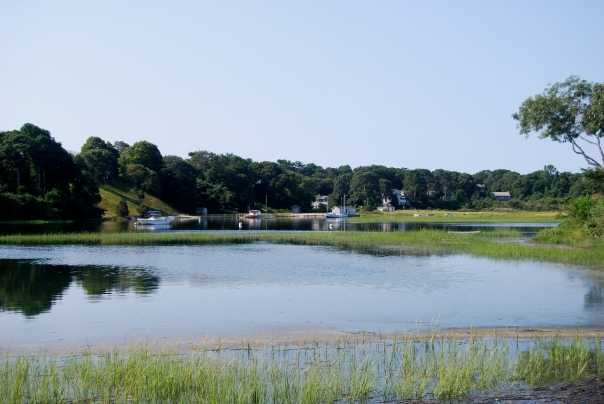 A view from the road. The Cape is a combination of marshes, bays, inland lakes, and of course, the Atlantic Ocean.