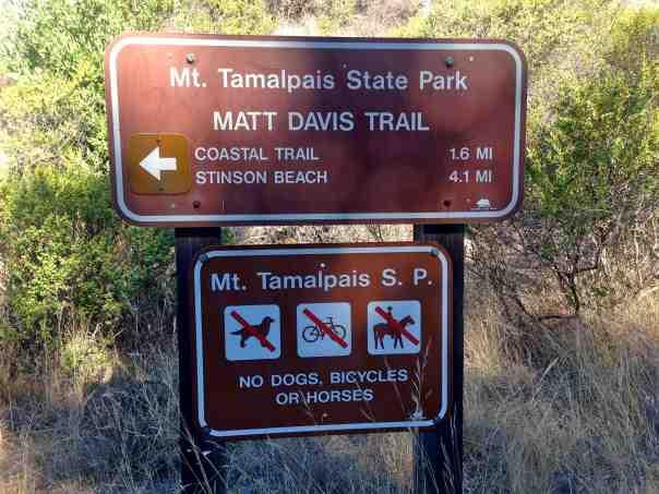 Heading out on the Matt Davis Trail towards Stinson Beach.